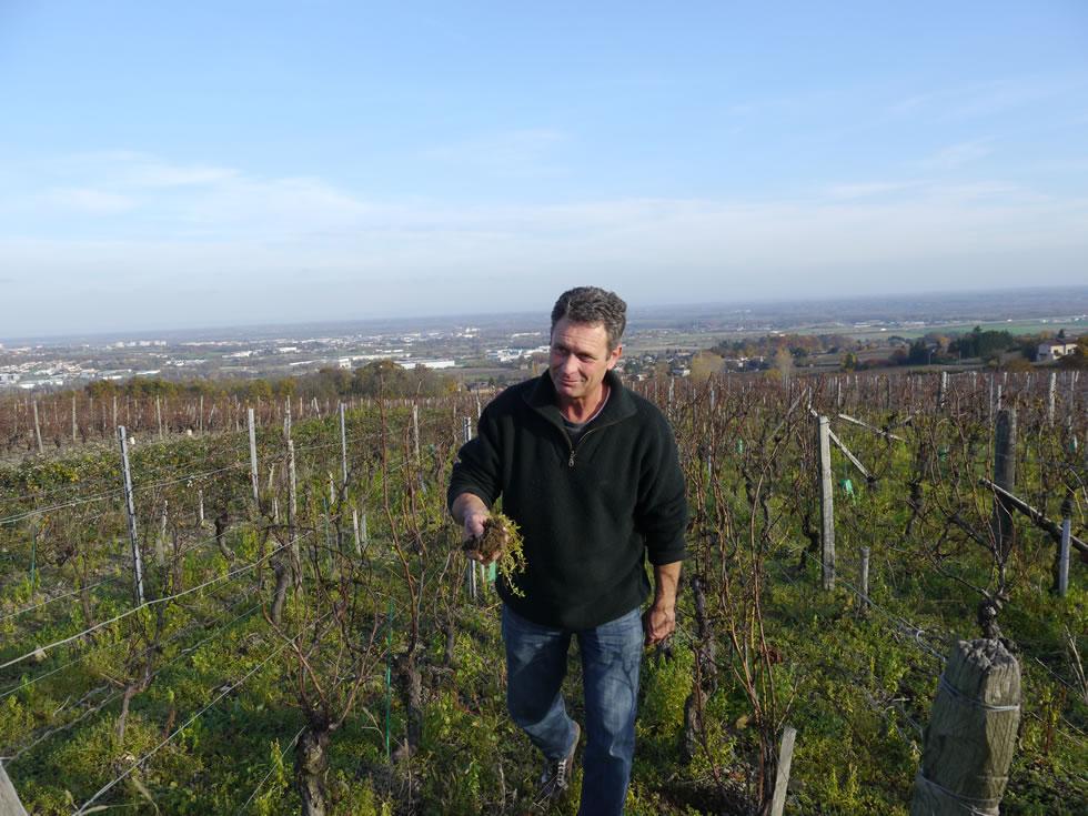 Marcel Couturier in zijn wijngaarden. Gelegen in Bourgogne. Photo by Alexander Wallace